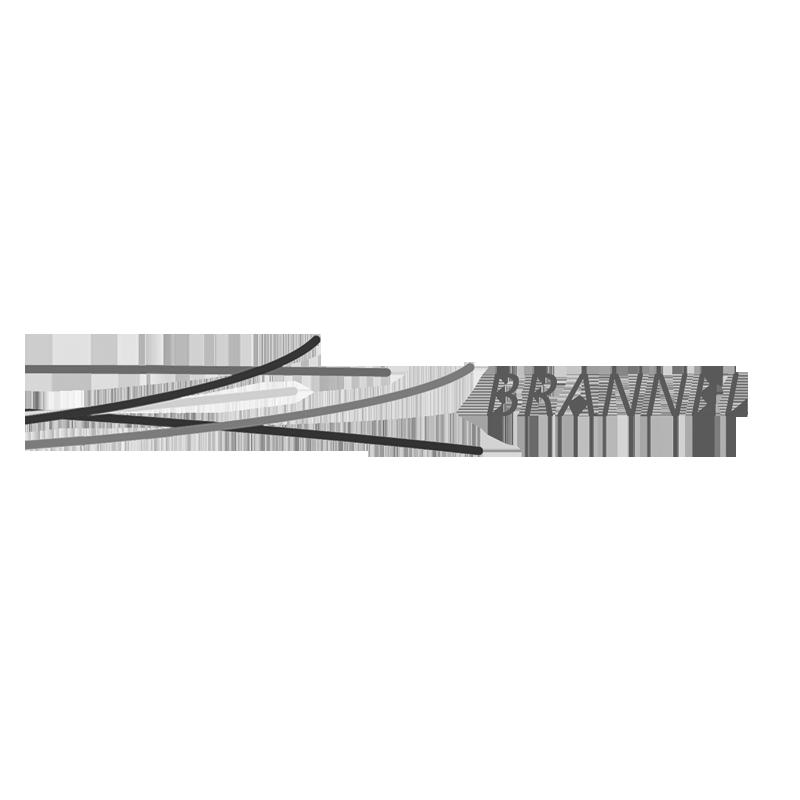 Brannel School